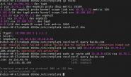 Ubuntu下DNS查询调试